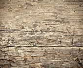 Rotting Dry Wooden Background