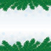 image of x-files  - Snow with fir branches on white grey background - JPG