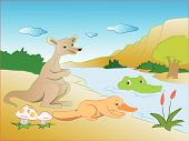 picture of platypus  - Vector illustration of crocodile sneaking on kangaroo and platypus on lakeside - JPG
