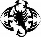 pic of scorpion  - Tattoo design of scorpion vintage engraved illustration - JPG
