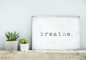 foto of wise  - motivational poster quote BREATHE - JPG