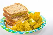 picture of jalapeno  - Ham and Cheese sandwich with guacamole dip and jalapeno pepper tortilla chips on paper plate with bright light from upper right - JPG