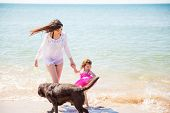 picture of babysitter  - Young brunette with her little daughter and her dog having a good time at the beach - JPG