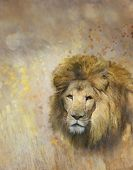 image of african lion  - Digital Painting Of African Lion - JPG
