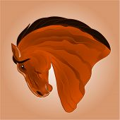 picture of stallion  - The head of light brown horse stallion drawing vector illustration - JPG