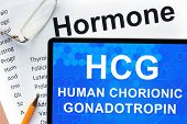 foto of hormone  - Papers with hormones list and tablet  with words  Human chorionic gonadotropin  - JPG