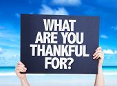 stock photo of humility  - What Are You Thankful For - JPG