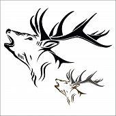 foto of deer head  - Vector illustration  - JPG