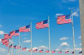 stock photo of washington monument  - Washington Monument flags in District of Columbia DC USA - JPG