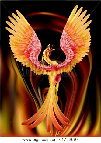 Picture or Photo of A phoenix rising from the ashes my entry for the ...