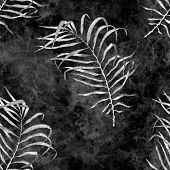 Tropical Seamless Pattern. Watercolor Flapping Palm Leaves, Japanese Bamboo. Black And White Exotic  poster