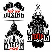 Set From The Vector Images Devoted To Boxing. Boxing Gloves, Ring, Punching Bag. Inscriptions - Boxi poster