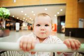 foto of grocery store  - Beautiful baby girl in shopping cart  - JPG