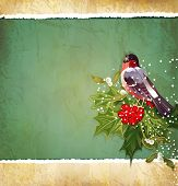 stock photo of winterberry  - vintage Christmas background with holly and bullfinch - JPG