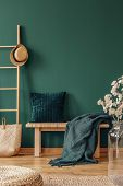 Pillow And Blanket On Bench In Green Apartment Interior With Plant, Pouf And Hat On Ladder. Real Pho poster
