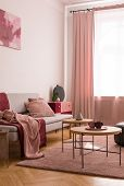 Table On Pink Carpet In Living Room Interior With Blanket On Grey Sofa And Drapes At Window. Real Ph poster