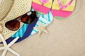picture of crustaceans  - Colorful summer beachwear - JPG