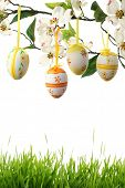 Easter Eggs hanging on branch with green grass border.