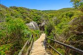 Wooden Staircase From Elephant Rocks To Elephant Cove Beach In William Bay National Park Near Denmar poster