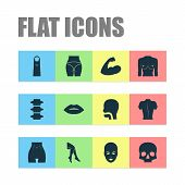 Physique Icons Set With Leg, Arm, Spine And Other Head Elements. Isolated Vector Illustration Physiq poster