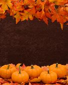 stock photo of fall leaves  - Fall leaves with pumpkin on brown background fall harvest - JPG