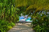 stock photo of kuramathi  - Pathway to jetty and moored yacht  - JPG