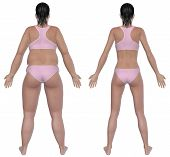 foto of flabby  - Before and after rear view illustration of a overweight female and a healthy weight female after dieting and exercising - JPG