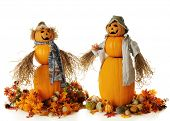 Two snowman-like pumpkin people, holding their bushy hands.  Each is surrounded by fall leaves, flow