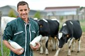 picture of dairy barn  - Farmer standing in front of cow herd with bottles of milk - JPG