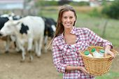 stock photo of cattle breeding  - Smiling young farmer carrying bottles of fresh milk - JPG