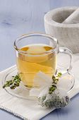 image of naturopathy  - Thyme Herbal Tea in a glass cup - JPG