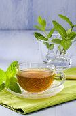pic of naturopathy  - Mint Herbal Tea in a glass cup - JPG