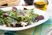 pic of baby goat  - Beets with walnuts goat cheese and baby greens organic salad - JPG