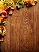 stock photo of fall leaves  - autumn background with colored leaves on wooden board - JPG