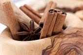 pic of backspace  - Cinnamon Sticks Cardamom vanilla bean and star anise on white  - JPG