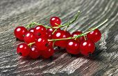 Red Currant on wood background
