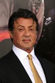 Sylvester Stallone  at the