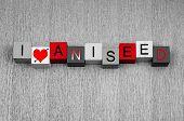 stock photo of ouzo  - I Love Aniseed - JPG