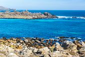 stock photo of shiting  - Beautiful blue water of the Pacific Ocean at Damas Island in Chile - JPG