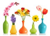 stock photo of flower vase  - Colorful spring flowers in bright vases isolated on white - JPG