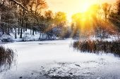 picture of snow forest  - Spectacular sunset over frozen winter forest lake - JPG