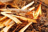 stock photo of bonfire  - wooden bonfire on bbq as background - JPG