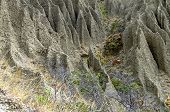 stock photo of denude  - Fragment of a hillside with traces of severe soil erosion - JPG