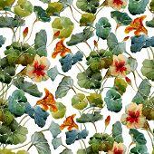 pic of nasturtium  - Beautiful vector pattern with nice watercolor nasturtium - JPG