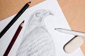 stock photo of hawk  - Graphite pencil eraser and stamp with drawing hawk on the wooden background - JPG