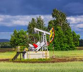 pic of nonrenewable  - Oil Pump on a background of forest in Russia - JPG