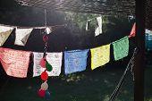 stock photo of prayer  - Colourful Prayer Flags hanging from a suburban verandah - JPG