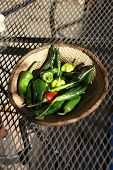 picture of pasilla chili  - A variety of fresh green chilies in a woven basket Seattle - JPG