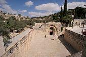 image of gethsemane  - Jerusalem - JPG