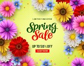 Spring Special Offer Vector Banner Background With Spring Season Sale Text And Colorful Chrysanthemu poster